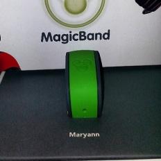 A close look at the MagicBand