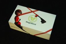 MagicBand packaging
